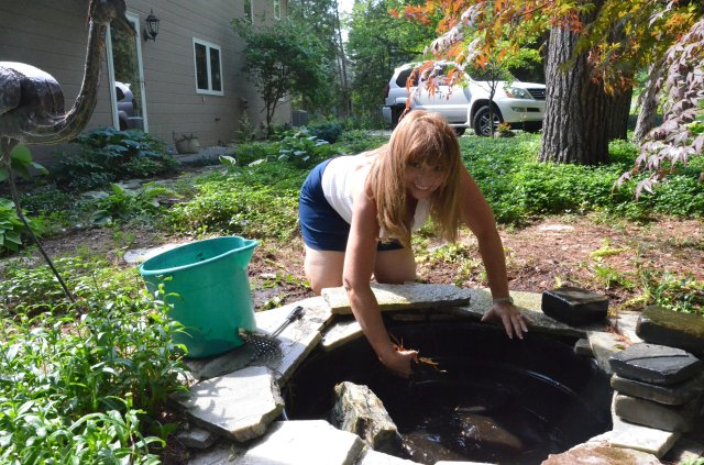 Cleaning and filling the pond