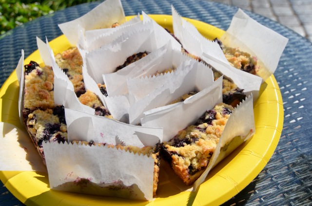 Blueberry Crumb Bars @ Sewfrench